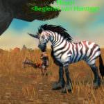 Patch 8.1 Jäger-Begleiter
