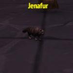 WoW Jenafur